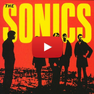 The Sonics – Have A Love Will Travel